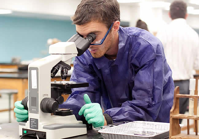 5 Things You Need to be a Successful Biology Major