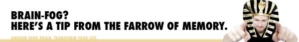 DaveFarrow-BrainFogMemoryTip